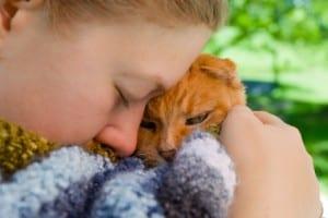 Adopting A Pet 300×200